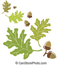 Oak leaves and acorns motif EPS10 vector format with space...