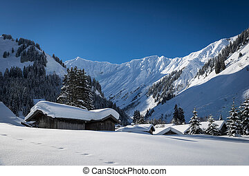 cottages with snow on roof in austrian alps at winter