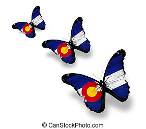 Three Colorado flag butterflies, isolated on white