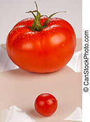 Big brother - Cherry tomato against the background of its...