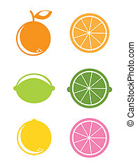 citrus icons over white background vector illustration