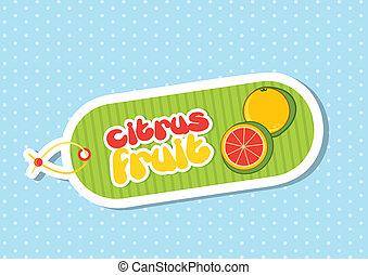 citrus fruit label over blue background. vector illustration