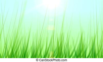 Grass Background 01 (25fps) - Artificial and stylized blades...