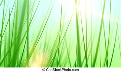 Grass Background 02 (25fps) - Artificial and stylized blades...