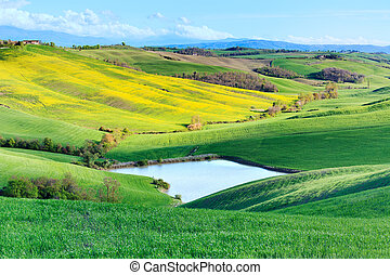 Tuscany, Crete Senesi landscape near Siena, Italy, europe. Small lake, green and yellow fields, blue sky with clouds.