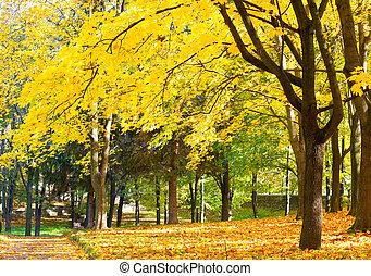 Dense vegetation of the autumn park
