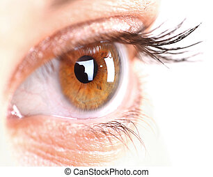woman eye with long eyelashes Space for text