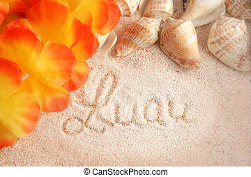 hawaiian beach background with the words luau on the...