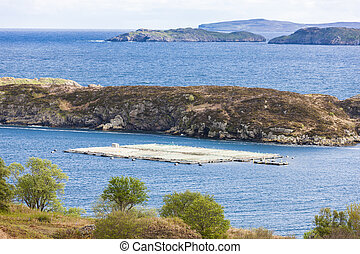 salmon farm at Drumbeg, Highlands, Scotland