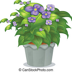 A plant with flowers