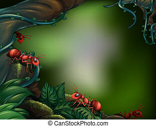 Ants at the rain forest - Illustration of the ants at the...
