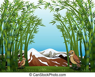 A bamboo forest view  - Illustration of a bamboo forest view