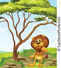 A lion at the hills