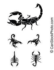escorpião, cobrança, jogo