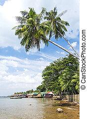 carangueijo, mercado, restaurantes, kep, cambodia