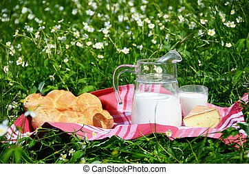 Milk, cheese and bread served at a picnic on Alpine meadow,...