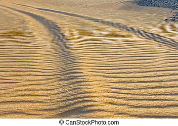 Footprints in the desert of Sahara Egypt