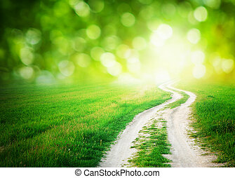 Way to sun - Lane in meadow and deep blue sky. Nature...