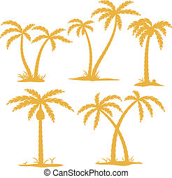 Palm Contours - Vector Palm tree Contours isolated on white
