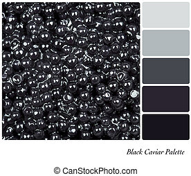 Black Caviar Palette - A colour palette with a background...