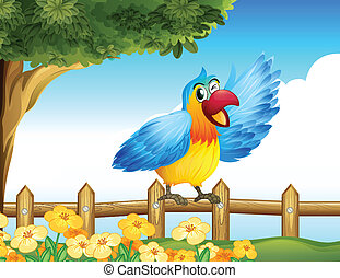 A colorful bird at the fence