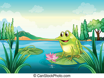 A frog at the river - Illustration of a frog at the river