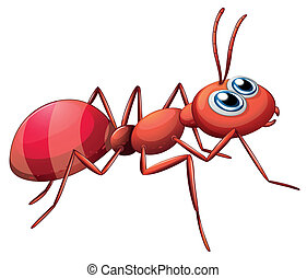 A big ant crawling - Illustration of a big ant crawling on a...
