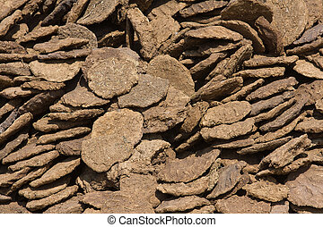 Dry cow dung, India - Dry cow dung in Pushkar, Rajasthan,...