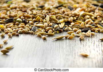 Bird seed mix, differential focus - A shot of bird seed mix...
