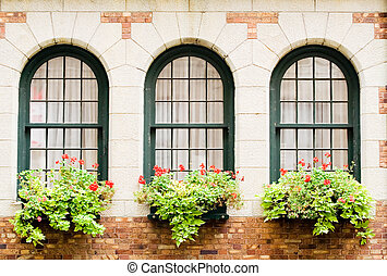 Frontenacs Castle Windo - 3 Frontenacs castle windows with...