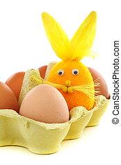 蛋, 箱子, 復活節,  bunny