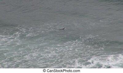 surfer 30