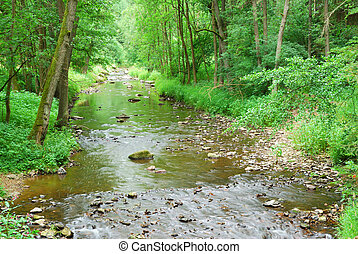 Small River with rocks and green banks and ford