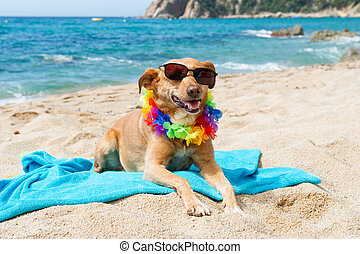 Relaxing dog at the beach with flowers garland