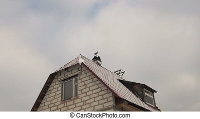 Weather-vane on the roof
