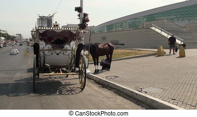 Coach rides on the square