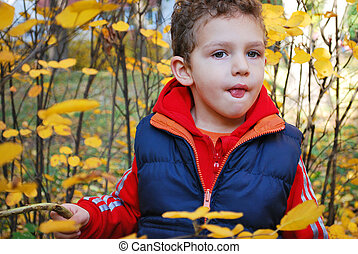 Curly-haired boy in the yellow leav - Beautiful curly-haired...