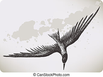 Flying bird, hand-drawing. Vector illustration.