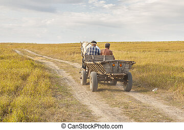 Two man on old cart - Ukraine - Two man on old wooden cart -...