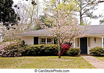 Pink Flowering Dogwood - Home in spring with a pink...