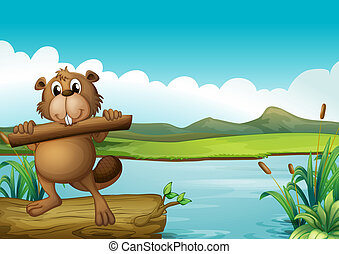 A beaver above a floating trunk holding a piece of wood -...