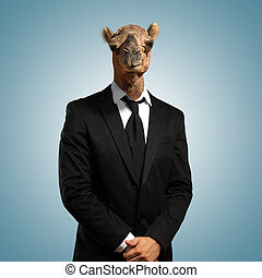 Portrait Of A Businessman With Camel Head On Coloured...