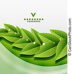 Green leaves nature design. Vector illustration