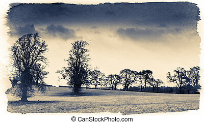 Creepy field - Shot of a creepy field in Scotland