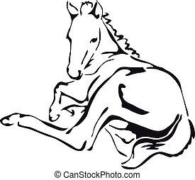 black and white foal - black and white vector outlines of a...