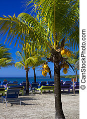 Caribbean Beach Resort on the island of Roatan, Honduras