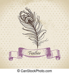 Vintage background with peacock feather Hand drawn...