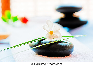 Still life with a black stone