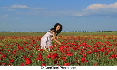 Among poppy flowers