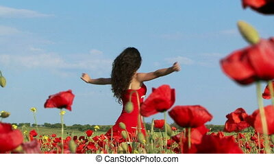Among blossoming poppies - Young woman in a field among...